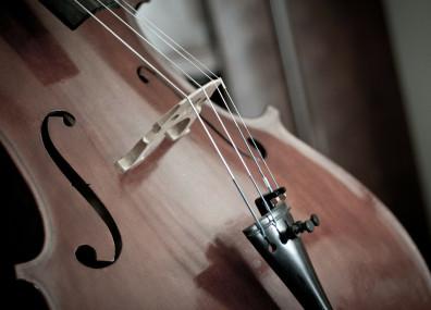 Cello (Ausschnitt)