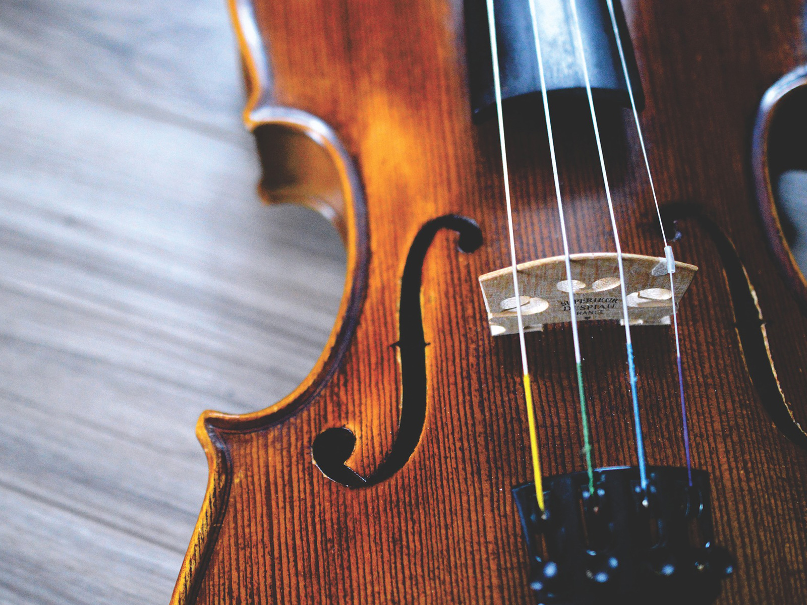 Geige (Ausschnitt)