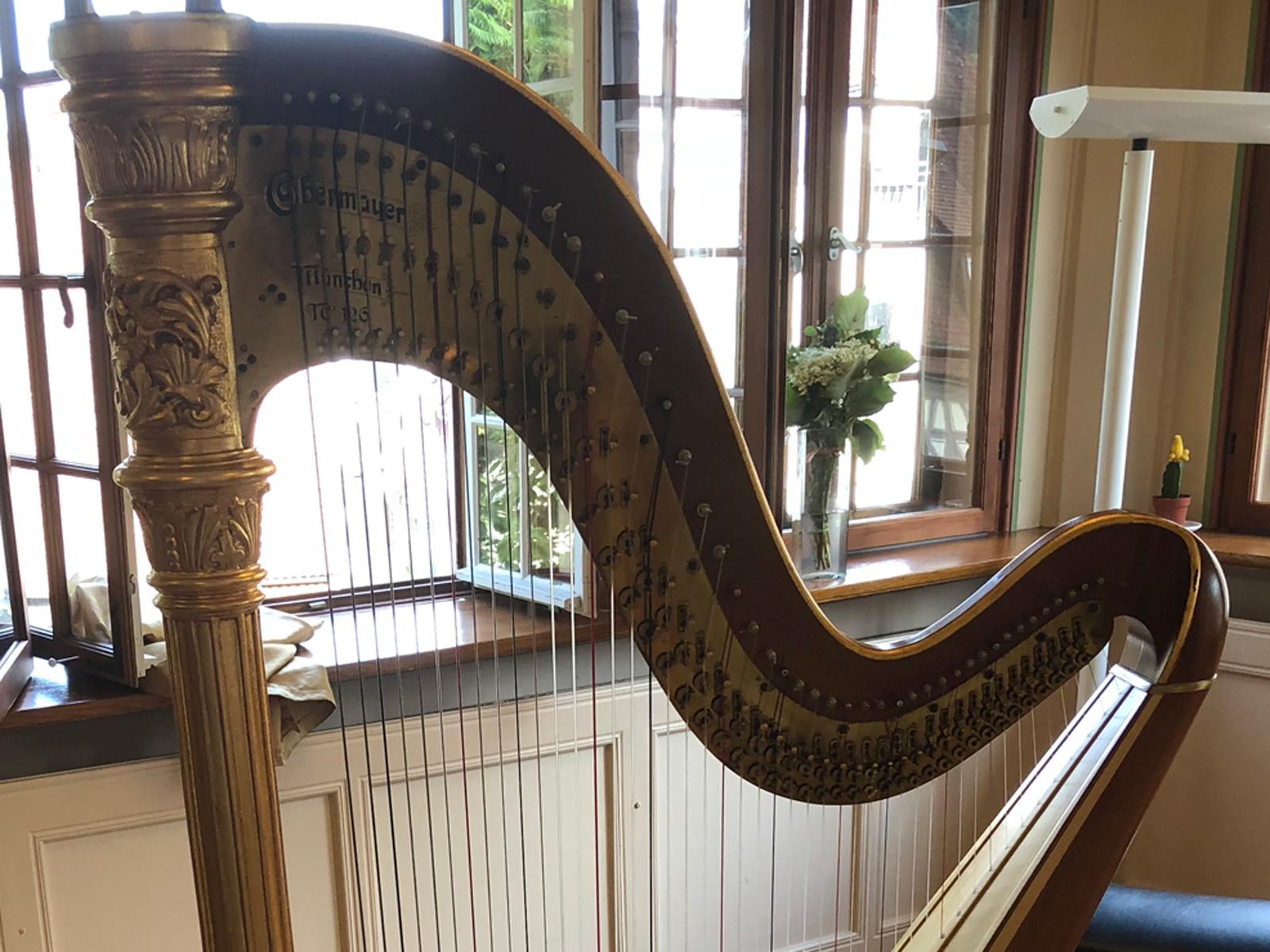 Harfe (Ausschnitt oberer Teil)