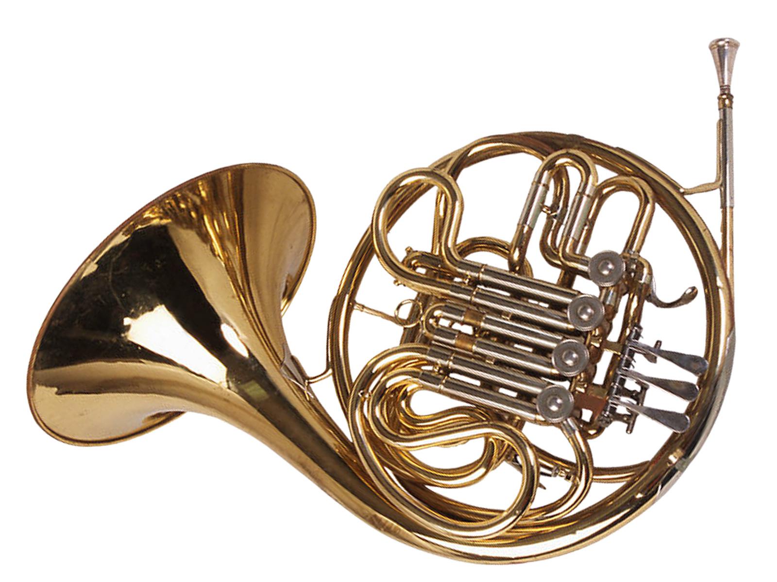 Horn (Waldhorn)