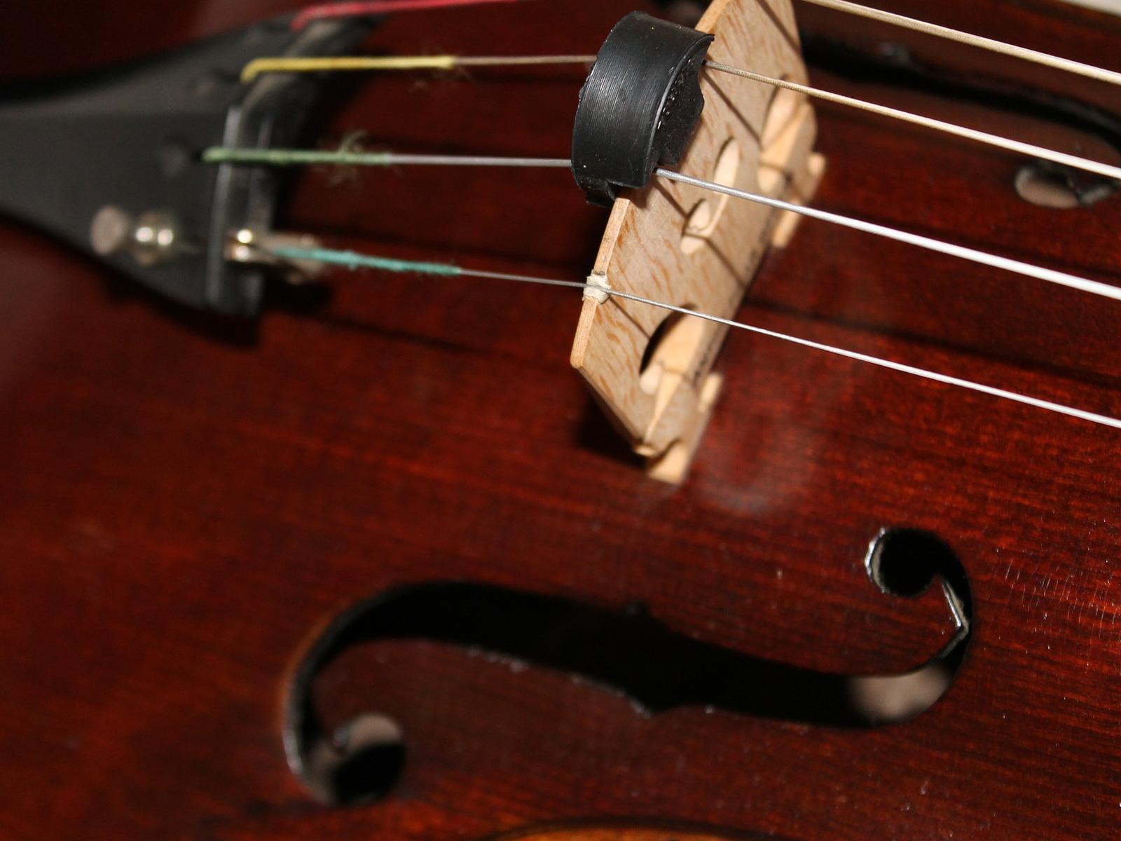 Bratsche (Viola) - Ausschntt Steg und F-Loch