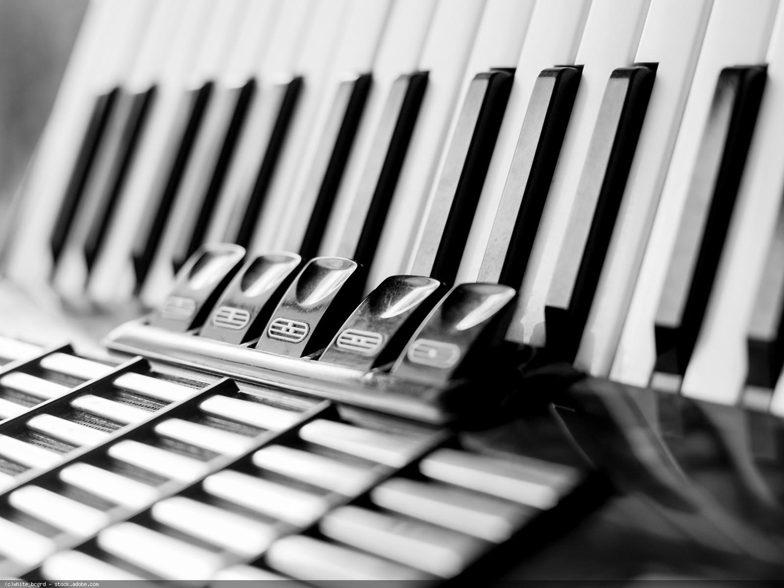 Akkordeon, Teilansicht schwarz-weiß