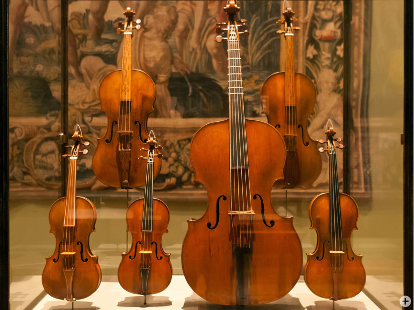 Familie der Streichinstrumente in Vitrine