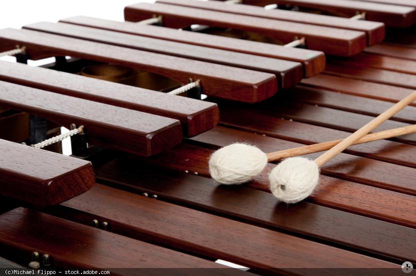 Marimba (Marimbaphon) mit Mallets (Schlägel), © Michael Flippo - stock.adobe.com