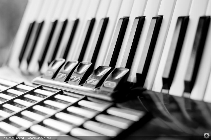 Akkordeon, Teilansicht schwarz-weiß, © white_bcgrd - stock.adobe.com